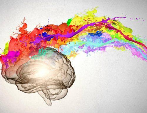¿Es la meditación parte de la clave para mejorar nuestra atención, memoria, autocontrol, bienestar… y por ende nuestra calidad de vida?